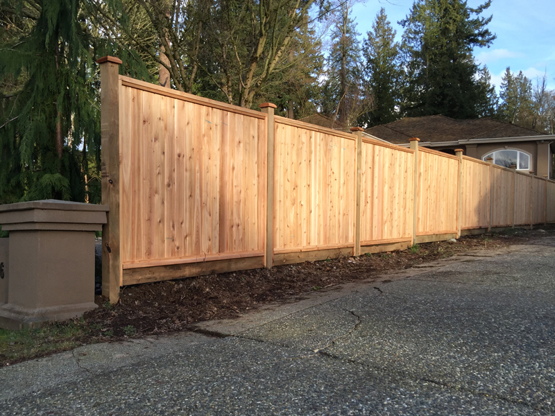 Solid cedar fence panels big red